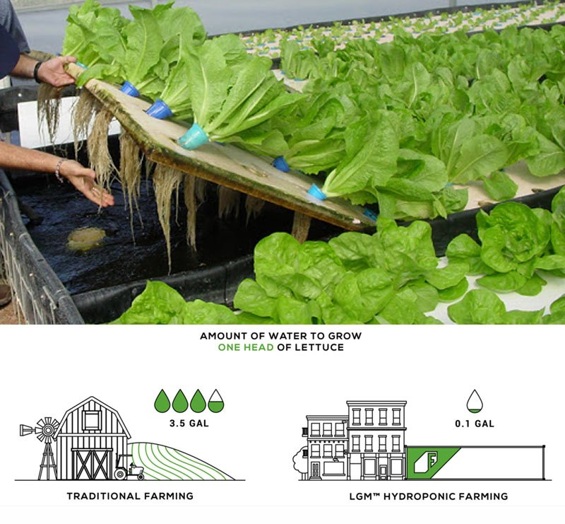 we can benefit from Hydroponics farming, It can conserve 75% of water compared to tradition farming